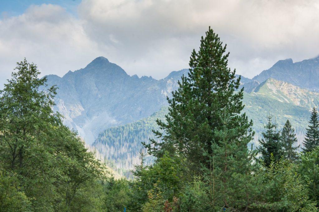 Tatry Słowackie z dzieckiem, Dolina Jaworowa - cudowneipozyteczne