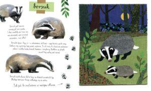 Najciekawsze książki dla dzieci - Mały atlas Zwierzaków Ewy i Pawła Pawlaków